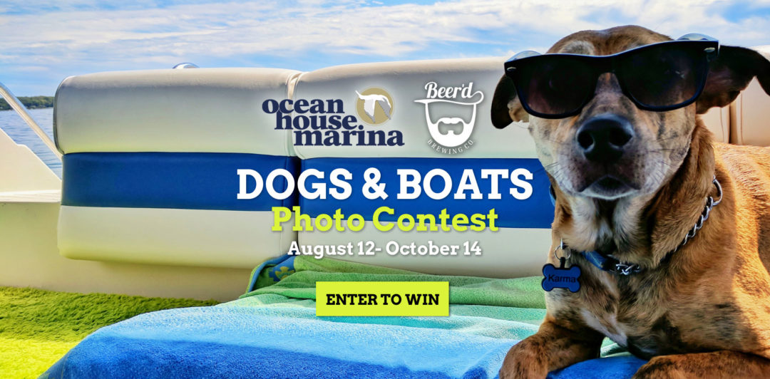 Dogs & Boats Photo Contest